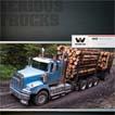 4900 Brochure